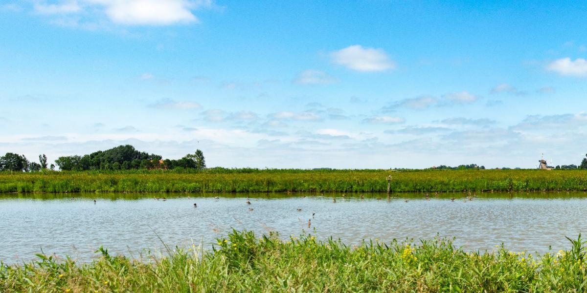 Stichting Agrarische Natuurfondsen Fryslân