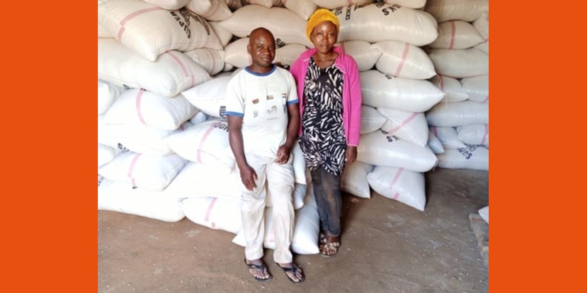 Grote oogst maakt rijstboer Abdoulaye tot voorbeeld